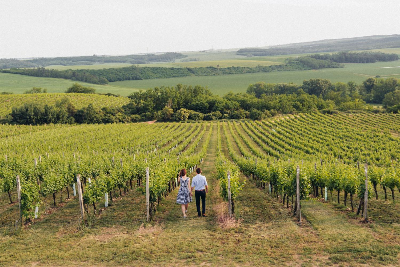 do vinohradu